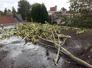 Are your roofs ready for fall storms?